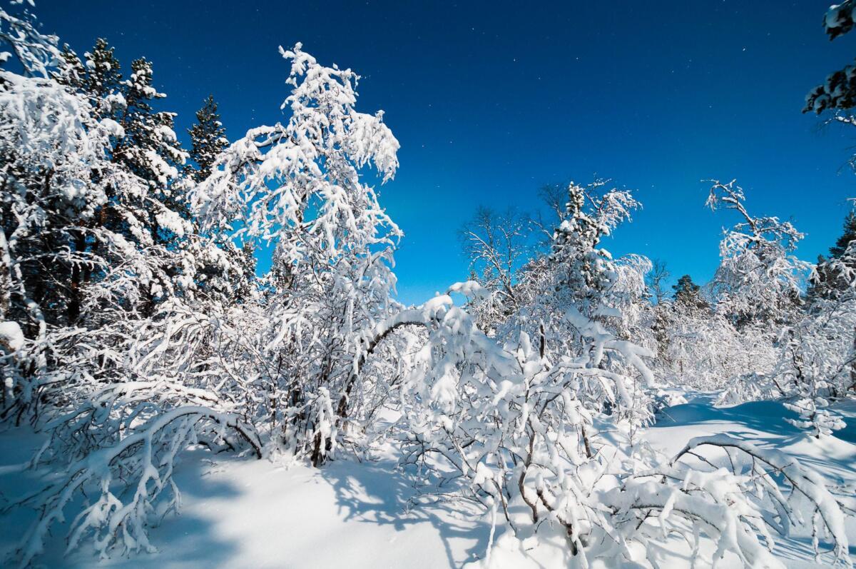 Winter wonderland - Karasjok